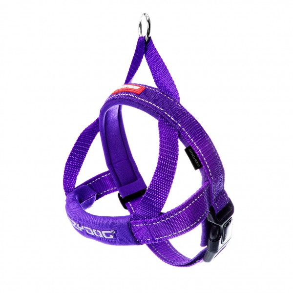 EzyDog Quick Fit Hundegeschirr - purple