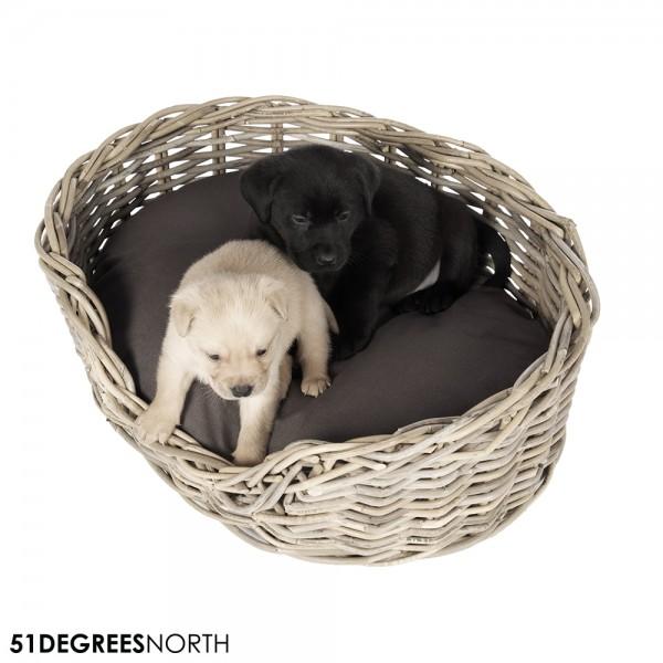 51DN Rattan Hundekorb oval 10Year inkl. Kissen